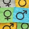 tal  gender equality  workplace gender equality  wgea  libby lyons  brett clark