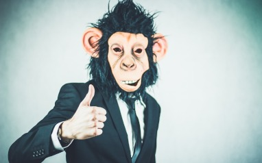 Monkey, life insurance, risk adviser, life insurance adviser, risk advice, Scott Heathwood, Wealthy and Wise, FASEA